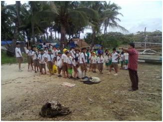 Coastal Clean-up 3
